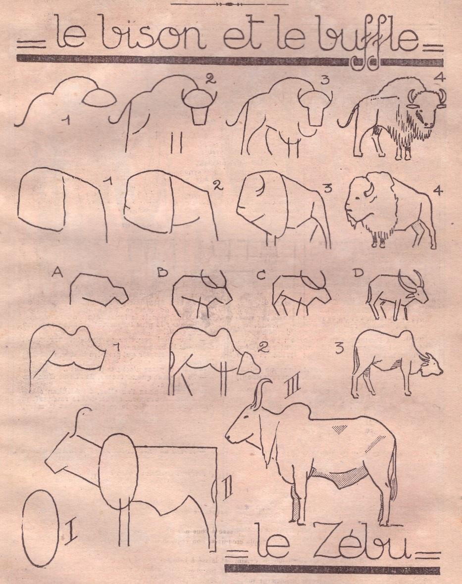 Apprendre dessiner le ons de dessin pour apprendre - Apprendre a dessiner un bison ...