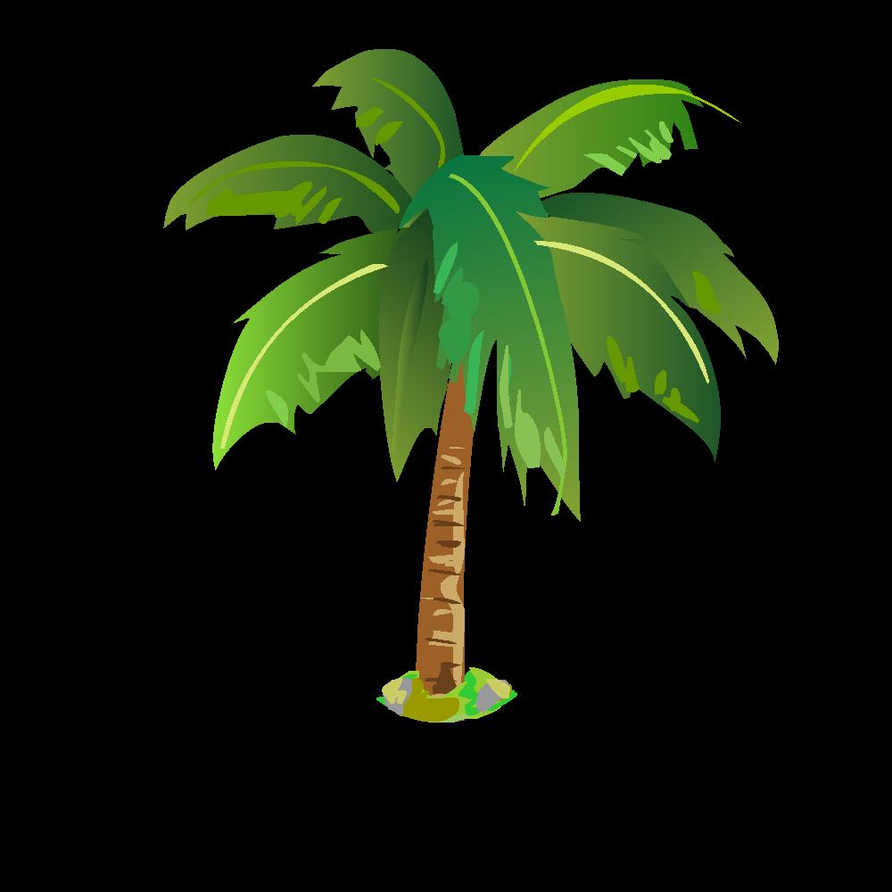 Plantes images en png fond transparent tests jeux - Image palmier ...