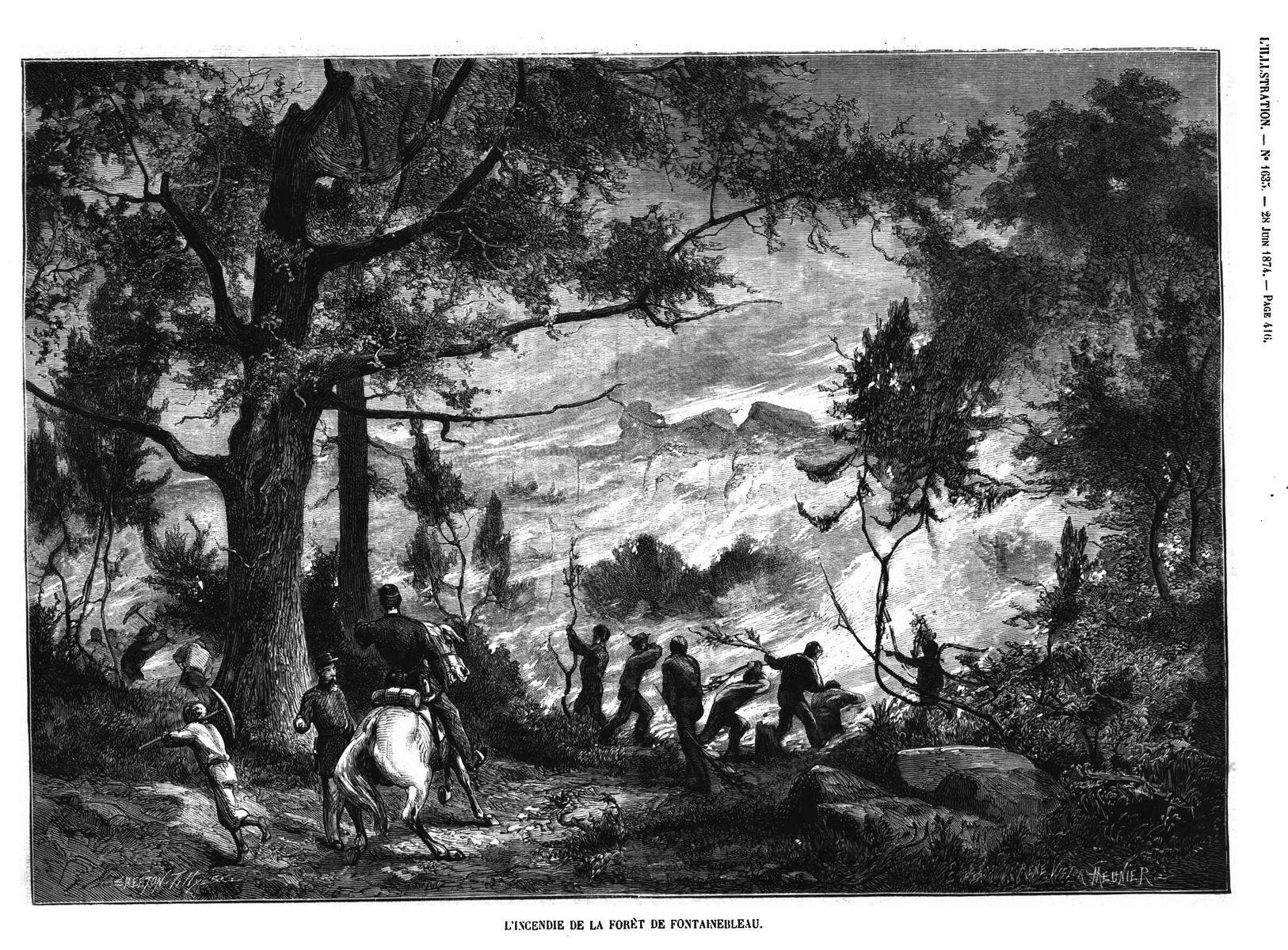 L'incendie de la foret de Fontainebleau. (gravure 1874)