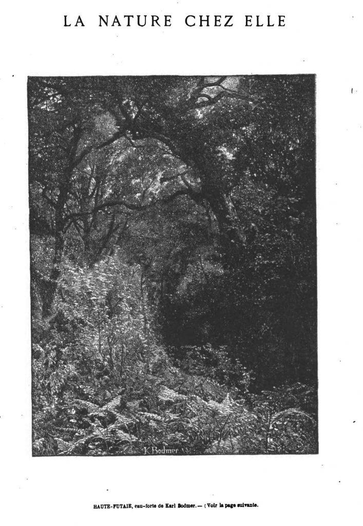 L illustration journal universel n 1426 engagement entre for Haute futaie