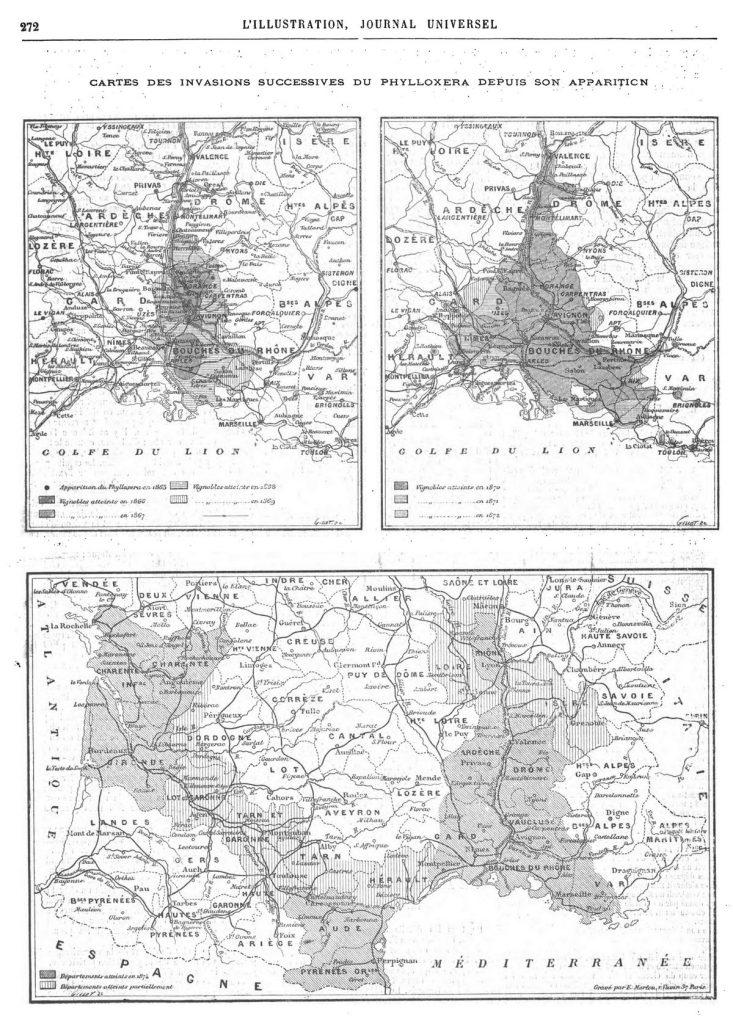 Cartes des invasions successives du Phylloxéra depuis son apparition (3 gravures). Gravure 1874