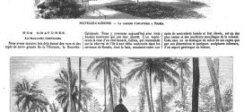 L'illustration journal universel n° 1696 – Nouvelle-Calédonie 1875