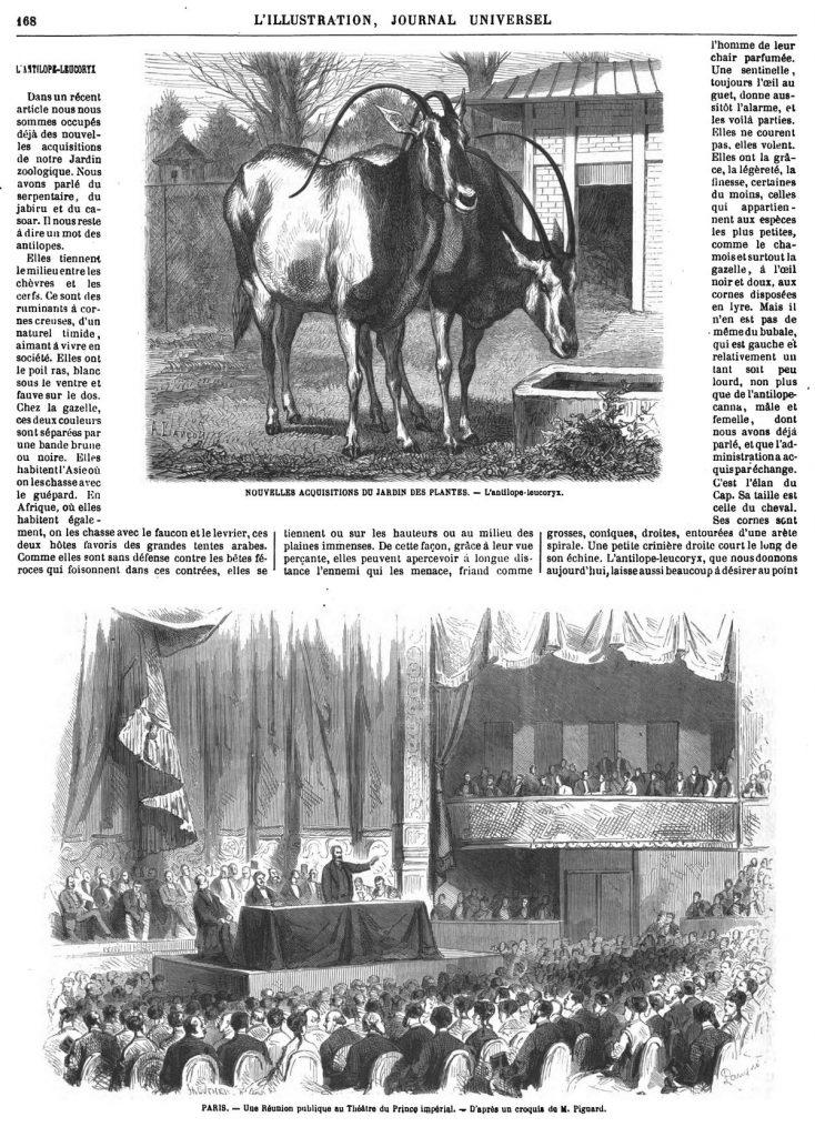 L illustration journal universel n 1359 les r sidences for Jardin lamartine