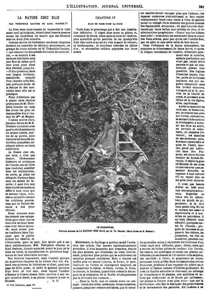 LE PIGEONNIER. Gravure extraite de LA NATURE CHEZ ELLE, par M. Th. Gautier