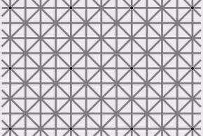 Combien de points noirs pouvez-vous voir sur l'image?